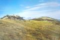 春の生石高原.png