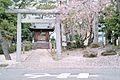稲荷神社とさくら - panoramio.jpg