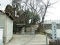 羽曳野市飛鳥 飛鳥戸神社 Asukabe-jinja 2012.2.12 - panoramio.jpg