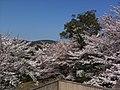 香川県坂出市白峰寺 - panoramio (1).jpg