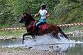 02018 0520 Abschied vom Sommer, Reiten auf den Huzulen Pferden in Rudawka am Wisłok.jpg