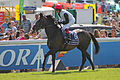 034 Epsom Derby 2015 - Golden Horn and Frankie Dettori going to post (18562661306).jpg