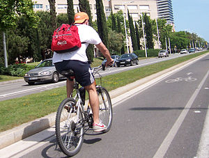 English: Bike path, in Barcelona. Español: Car...