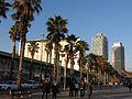 059 Hospital del Mar, Hotel Arts i Torre Mapfre.JPG