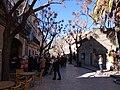 07170 Valldemossa, Illes Balears, Spain - panoramio (26).jpg