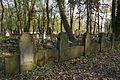 1471viki Cmentarz żydowski przy ul. Lotniczej. Foto Barbara Maliszewska.jpg