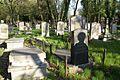 1498viki Cmentarz żydowski przy ul. Lotniczej. Foto Barbara Maliszewska.jpg
