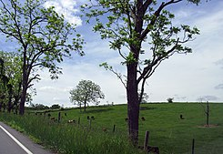1643 - Bethel Twp - View from PA643 near US522.JPG