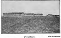1910 porumbare.PNG