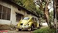 1967 Volkswagen Beetle, Bangladesh. (41233308264).jpg