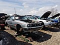 1982 Mercury Capri RS - Flickr - dave 7.jpg
