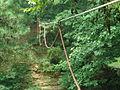 20030830중앙119구조단 산악계곡구조 훈련39.jpg