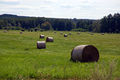 2009-07-29-finowkanal-by-RalfR-53.jpg