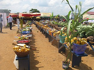 Agriculture in Ghana