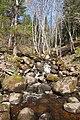 20120430-09(Akmeņupītes ūdenskritums).jpg