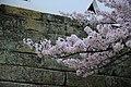 20160403 Himeji-Castle 3425 (26553488210).jpg