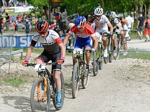 Mountain bike racing - A cross-country race of the 2016 UCI Mountain Bike World Cup held in Albstadt, Germany