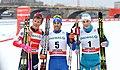 2018-01-13 FIS-Skiweltcup Dresden 2018 (Finale Männer) by Sandro Halank–008.jpg