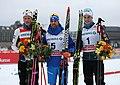 2018-01-13 FIS-Skiweltcup Dresden 2018 (Siegerehrung Männer) by Sandro Halank–018.jpg