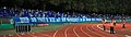 2018-08-17 1. FC Schweinfurt 05 vs. FC Schalke 04 (DFB-Pokal) by Sandro Halank–494.jpg