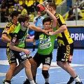 20180427 HLA 2017-18 Quarter Finals Westwien vs. Bregenz Felix Fuchs 850 8249.jpg