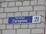21 Haharina street sign in Nova Vodolaha.jpg