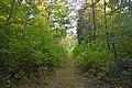 46-236-5002 Bakivskyi Park RB 18.jpg