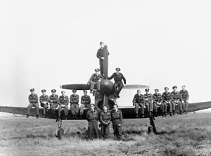 Military history of New Zealand - Pilots of 486 (NZ) Squadron, with Hawker Tempest, Volkel, Holland, 1945