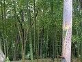 4 Chome Jindaiji Minamimachi, Chōfu-shi, Tōkyō-to 182-0013, Japan - panoramio.jpg