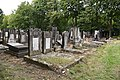 6011 Łódź Jewish Cemetery.jpg