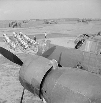 RAF Ringway - Paratroopers from the 6th (Royal Welch) Parachute Battalion undergoing physical training with No. 1 Parachute Training School at Ringway, with a Whitley III in foreground, August 1942