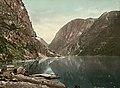 7050. Nærofjord fra Gudvangen (19423327294).jpg