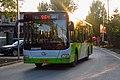 8371383 at Dongshan (20170906180758).jpg