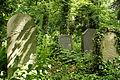 9781viki Cmentarz Żydowski na Ślężnej. Barbara Maliszewska.jpg