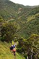 Açores 2010-07-20 (5070809428).jpg