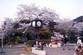 A196 Japan Kyoto Live (4764447714).jpg