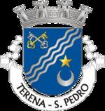 Brasão da freguesia de Terena (São Pedro)