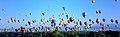 AIBF Mass Ascent, 2007.jpg