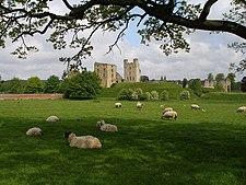A beautiful English pastoral view - geograph.org.uk - 432515.jpg