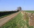 A country road - geograph.org.uk - 376731.jpg