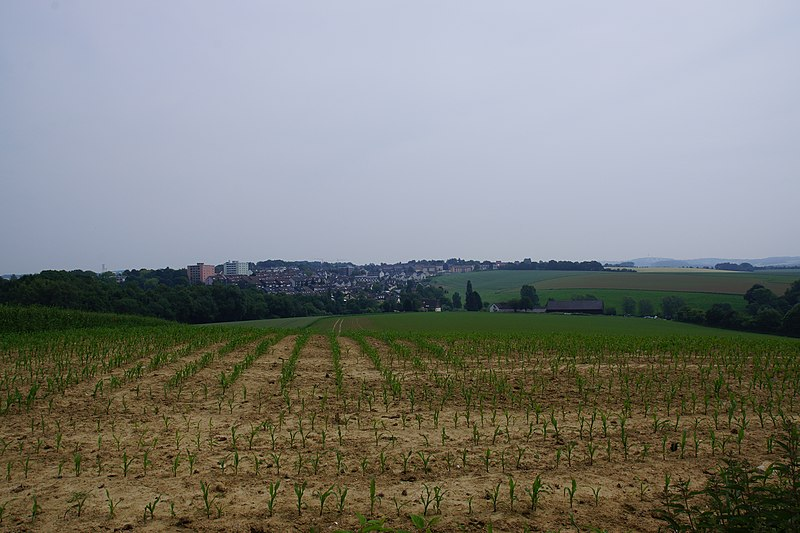 File:A part of Mettmann (Wülfrath) - panoramio.jpg