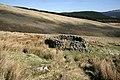 A small sheepfold - geograph.org.uk - 1257028.jpg