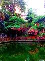 A view of Baldha Garden.jpg