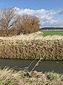 Across Ellerker Drain - geograph.org.uk - 721696.jpg