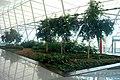 Aeropuerto Internacional de Carrasco - panoramio (53).jpg