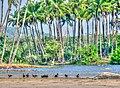 Agonda, Goa 403702, India - panoramio.jpg