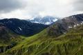 Alaskan tundra, Denali National Park, Alaska LCCN2010630809.tif