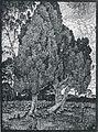 Albert König Wacholdergrupppe III.jpg