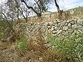 Albufeira, Dry stone wall, 18 October 2016.JPG