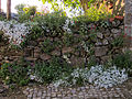Aldeia de Montesinho (5729593968).jpg
